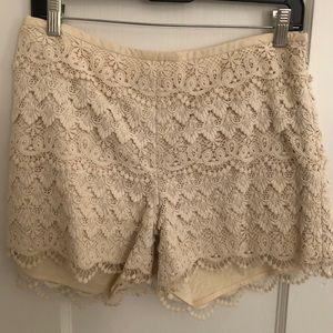 J.McLaughlin ivory lace shorts, so cute, size 6